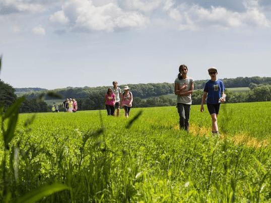 Elham Valley Walking Festival