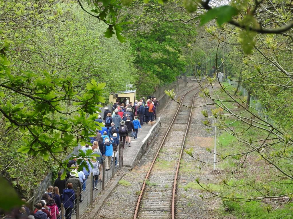 Lis train 2