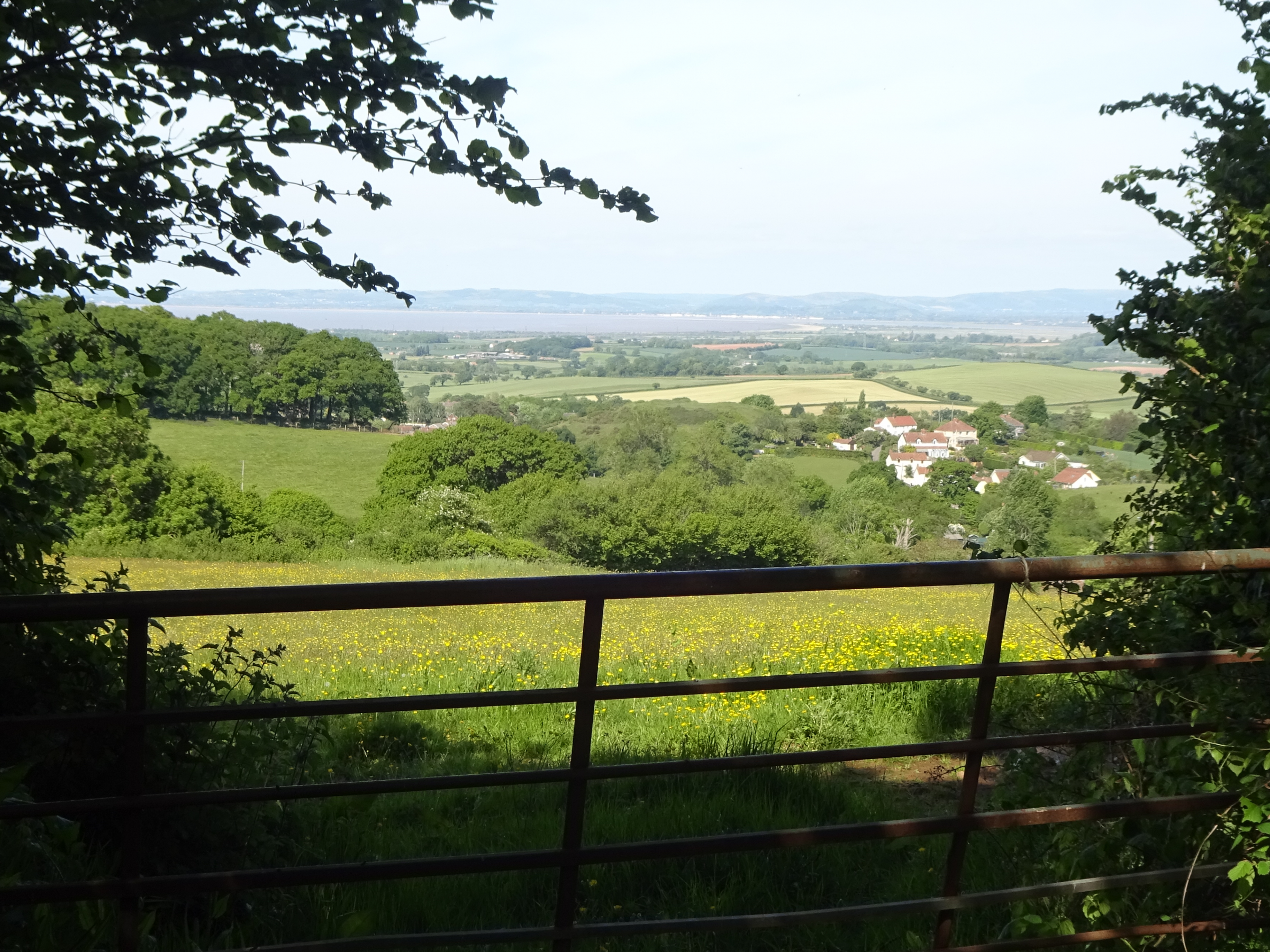 The Quantock Hills Walking Festival 2020 is Postponed