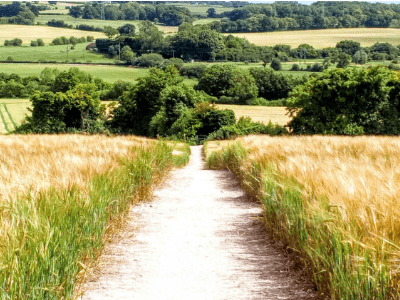 Alton's Walking And Cycling Festival