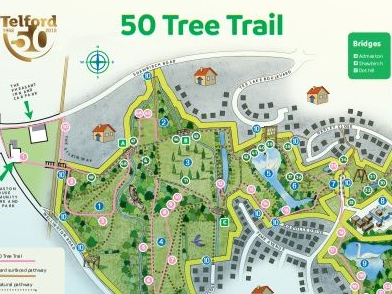 National Tree Week Walk Wellington